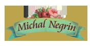 Michal Negrin